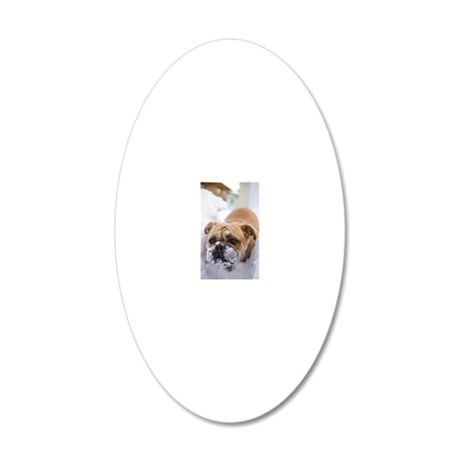 Dog in snow 20x12 Oval Wall Decal