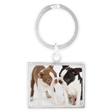 Portrait of Boston Terrier Pupp Landscape Keychain