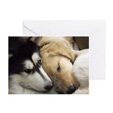 Puppy dog heads sleeping Greeting Cards (Pk of 20)