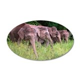 Four Elephants grazzing in   Wall Decal
