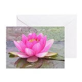 Lotus Greeting Cards (Pk of 10)