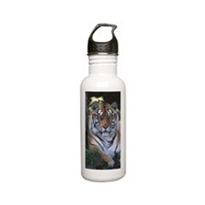 Tiger resting (Panther Stainless Steel Water Bottle