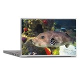 Fish-Busan Aquarium-Busan-South Korea Laptop Skins