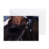 Cute Akhal teke Greeting Cards (Pk of 10)