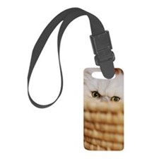 Persian cat peeking Luggage Tag