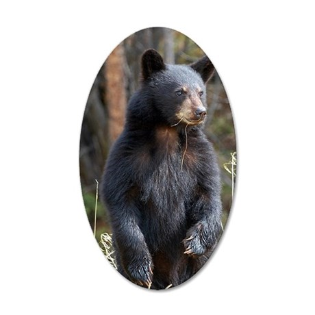 Standing Black Bear Cub 35x21 Oval Wall Decal