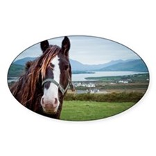 Irish horse with Ring of Kerry in b Decal