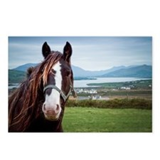 Irish horse with Ring of  Postcards (Package of 8)