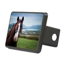 Irish horse with Ring of K Hitch Cover