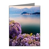 Wisteria Note Cards (Pk of 20)