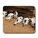 Cattle skulls lying on the ground in a ro Mousepad