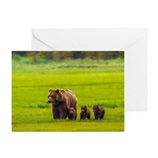 Mother bear and three cu Greeting Cards (Pk of 10)