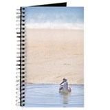 Sandpiper resting in tidal pool at beach,  Journal