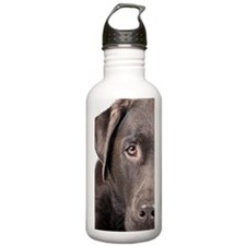 Studio portrait of dog Water Bottle