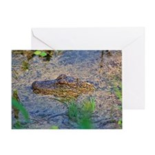 American Alligator juvenile Greeting Card