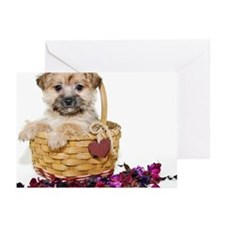 Sweet  morkie  puppy Greeting Cards (Pk of 10)