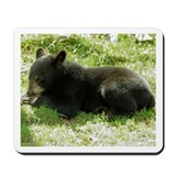Black Bear Cub Mousepad