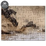 Leaping into next year Puzzle
