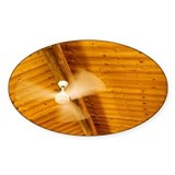 Ceiling fan turning in a log cabin Decal