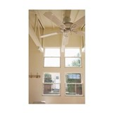 Ceiling Fan and Window Decal