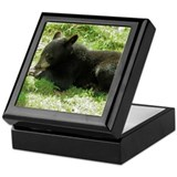 Black Bear Cub Keepsake Box