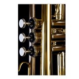 Detail of a trumpet Postcards (Package of 8)