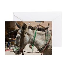 working donkey hitched u Greeting Cards (Pk of 10)