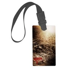 Red bench on rocks Luggage Tag