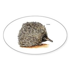 Echidna Spiny Animal Decal