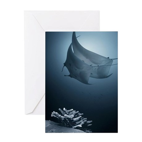 Two mantas dancing Greeting Card