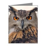 Owls well that ends well Note Cards (Pk of 10)