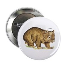 """Wombat Animal 2.25"""" Button (100 pack)"""