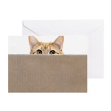 Orange cat peeping out f Greeting Cards (Pk of 20)