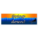 Going Down? Bumper Car Sticker