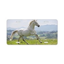 white horse running on mead Aluminum License Plate