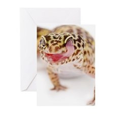 Leopard Gecko (Eublephar Greeting Cards (Pk of 10)