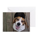 Happy dog looking at cam Greeting Cards (Pk of 20)