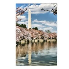 Tidal Basin Blossoms Postcards (Package of 8)