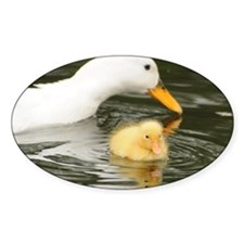 White duck and her duckling Decal