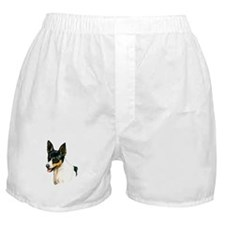 RAT Terrier Boxer Shorts