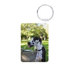 Harlequin Great Dane, Chor Keychains