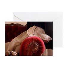 Weimaraner sleeping on r Greeting Cards (Pk of 20)