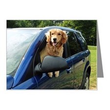 Golden retriever in blue car Note Cards (Pk of 10)