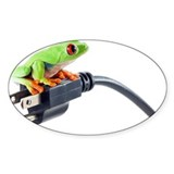 Red eyed tree frog on electrical co Decal