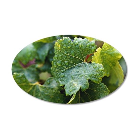 Vine leaves 35x21 Oval Wall Decal