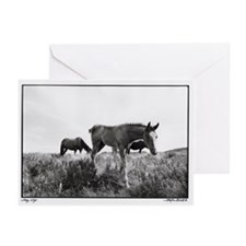 Story, Wyo. Cards (pkg. of 6)