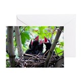 Crows Nest Greeting Card