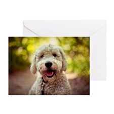 Portrait of golden doodl Greeting Cards (Pk of 20)