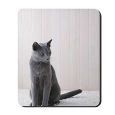 Russian blue cat sitting Mousepad