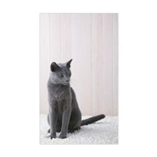 Russian blue cat sitting Decal